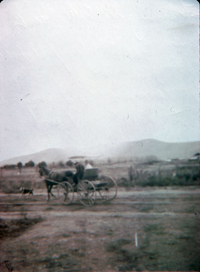 The grocer's cart heading north from the Hunt home on Garfield Avenue