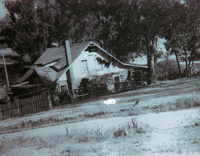 Richard Garvey's home at 2109 Del Mar Ave was built around 1900 with Eucalyptus logs